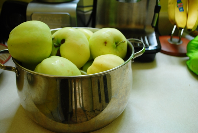 Apples in the pot, ready for rendering