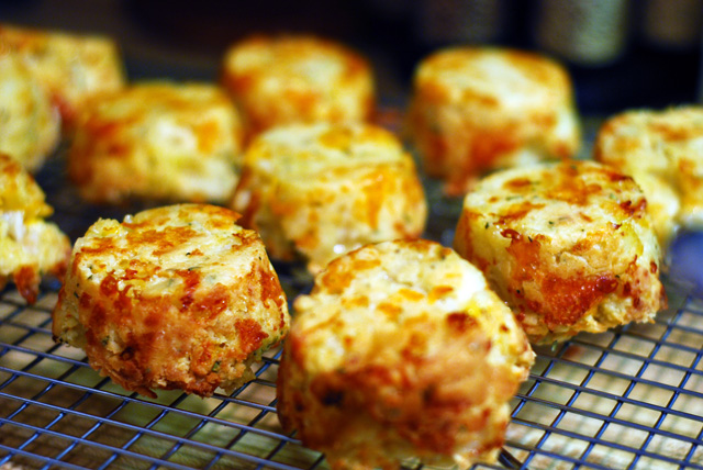 Apple, Cheddar Biscuits with Rosemary