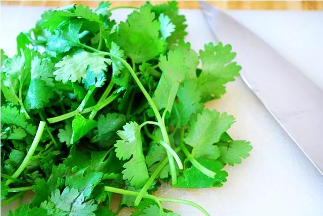 Delicious cilantro. Love hate though, really