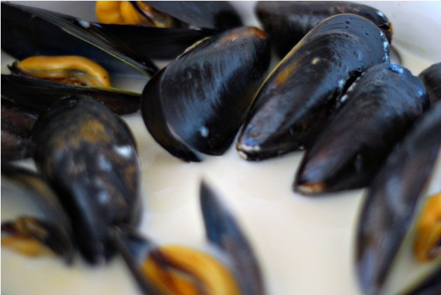 Steaming mussels in cream both