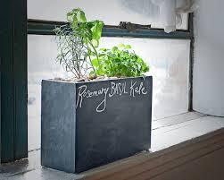 modernsprout