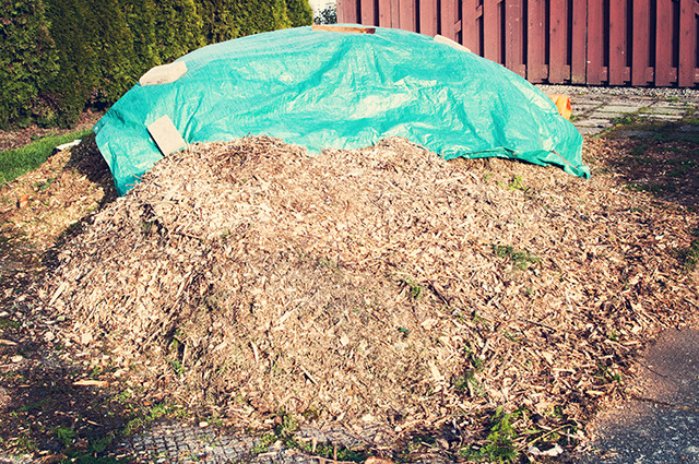 woodchips-pile1-2